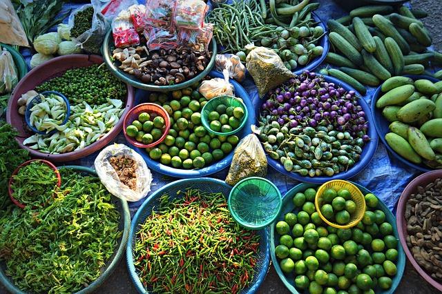 aliments prophylaxie et bien être