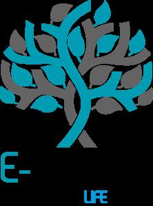 """logo de la solution de télé rééducation pour patients et collaborateurs sous contrôle de professionnels de santé kin"""" enseignant APA"""